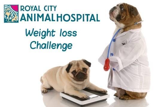Weight loss surgeons richmond va