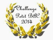 Petit Bac 2014 (31.12.2014)