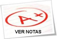 NOTAS ONLINE (PROFESSORES)