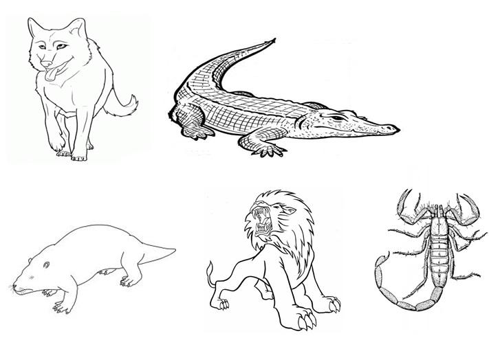 Recursos educativos: animales recortables para colorear y sopa de ...