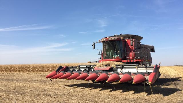 Harvest 7
