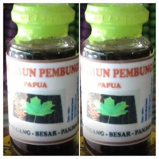 daun bungkus asli biak papua