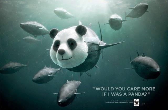 animal-advertising-1