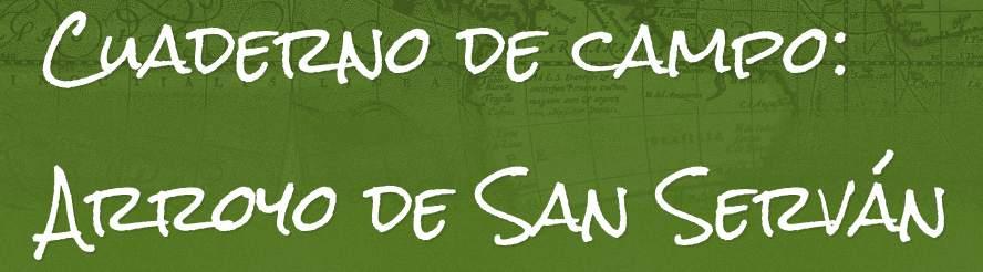 Cuaderno de campo: Arroyo de San Serván