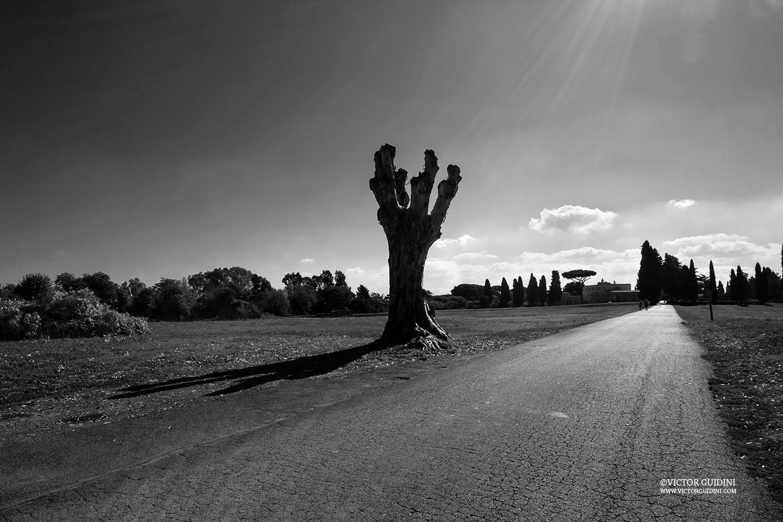 rome via appia antica