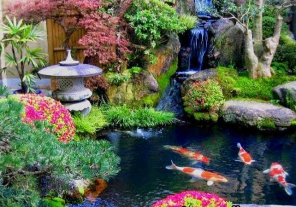 Chung Hoàng An,sân vườn đẹp, thiet ke san vuon,san vuon dep,tieu canh san vuon, vuonn nha dep,chung hoang an,vuon tren tuong,vuon tren mai,tuong cay,thiet ke vuon dep, vuon nhat ban,san vuon biet thu,japan garden, thiet ke vuon nhat