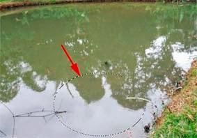 Efek Zigzag/Gelombang Air