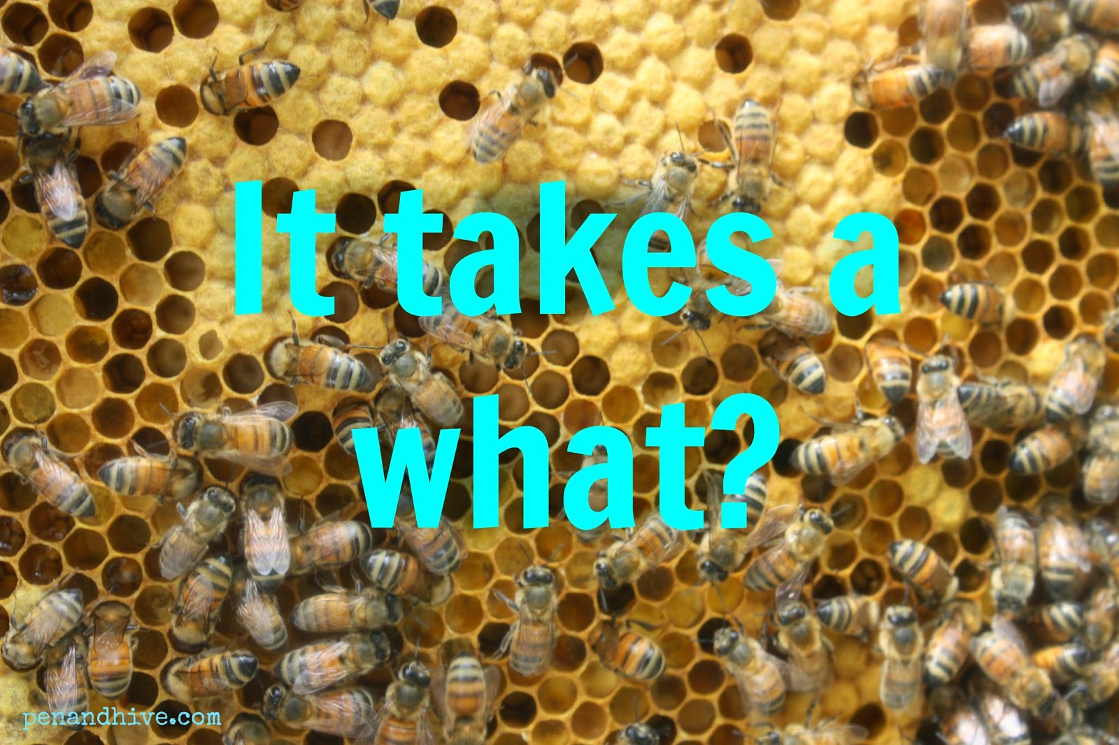 beekeeping and community
