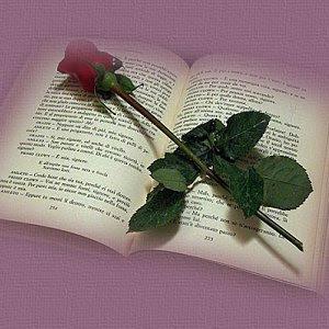 Cerpen Romantis