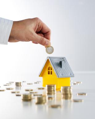 ley inmobiliaria: