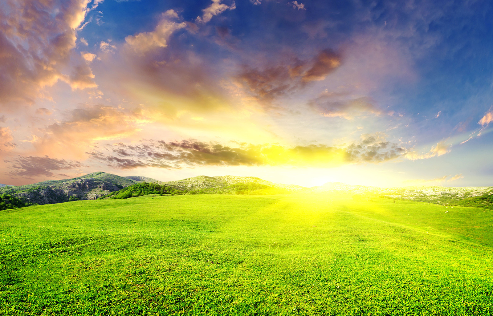 Beautiful landscape with green field and sun khoirulpage for Beautiful landscapes