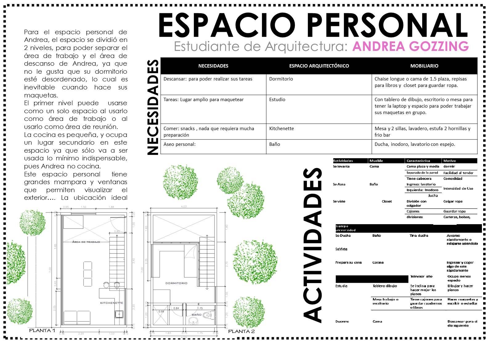 Introduccion a la arquitectura proyecto individual for Ejemplo de programa de necesidades arquitectura