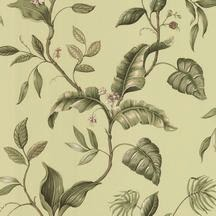 https://www.wallcoveringsforless.com/shoppingcart/prodlist1.CFM?page=_prod_detail.cfm&product_id=41686&startrow=73&search=dlr&pagereturn=_search.cfm