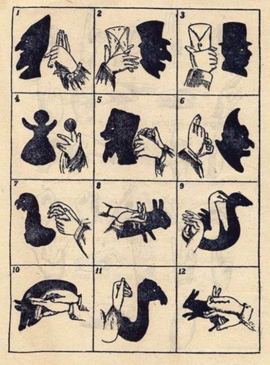 bayangan tangan hewan, bayangan tangan keren, kreasi bayangan tangan, membuat bayangan tangan, main bayangan tangan, cara membuat bayangan menggunakan tangan,