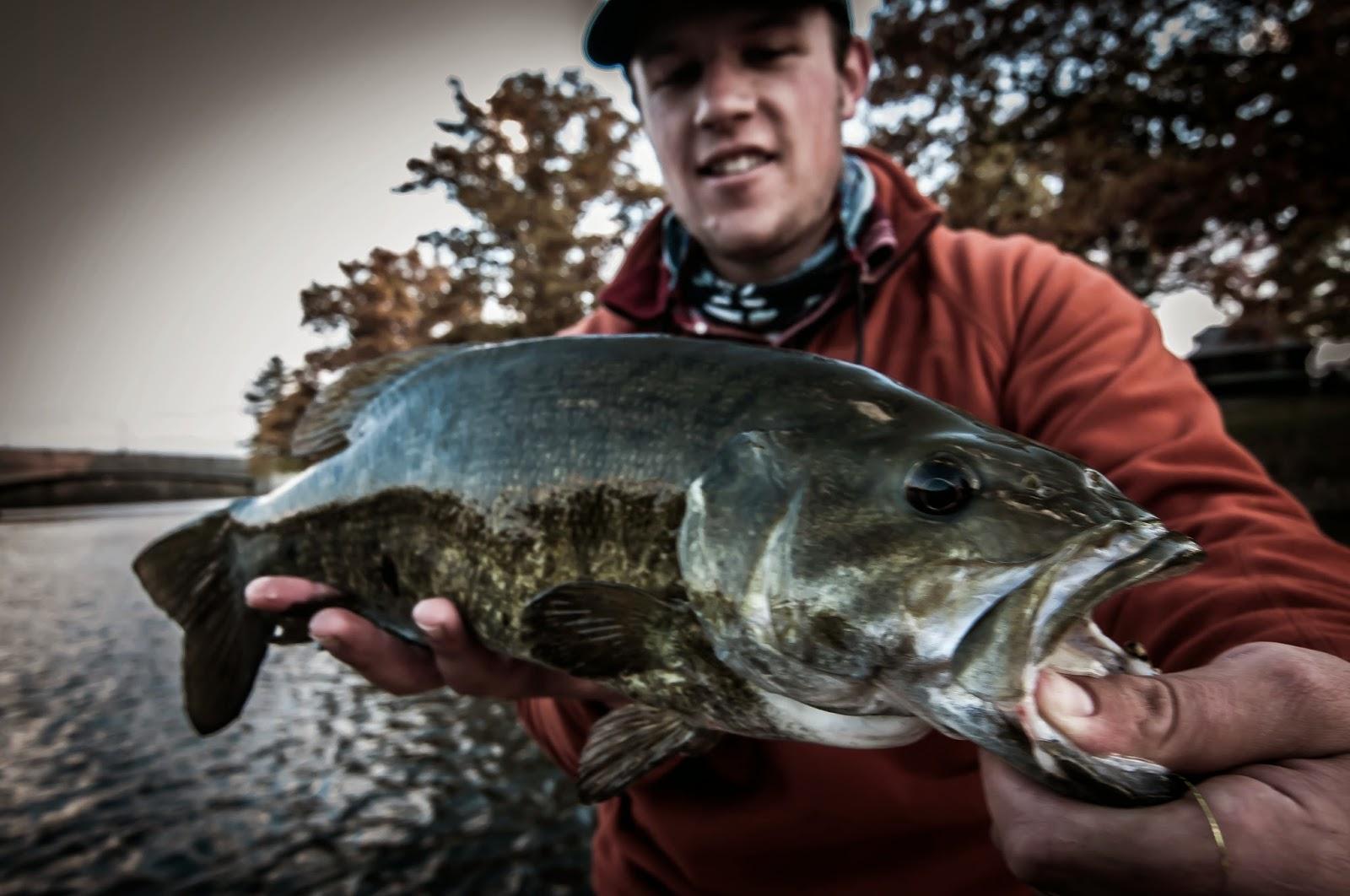 PA Smallmouth Bass