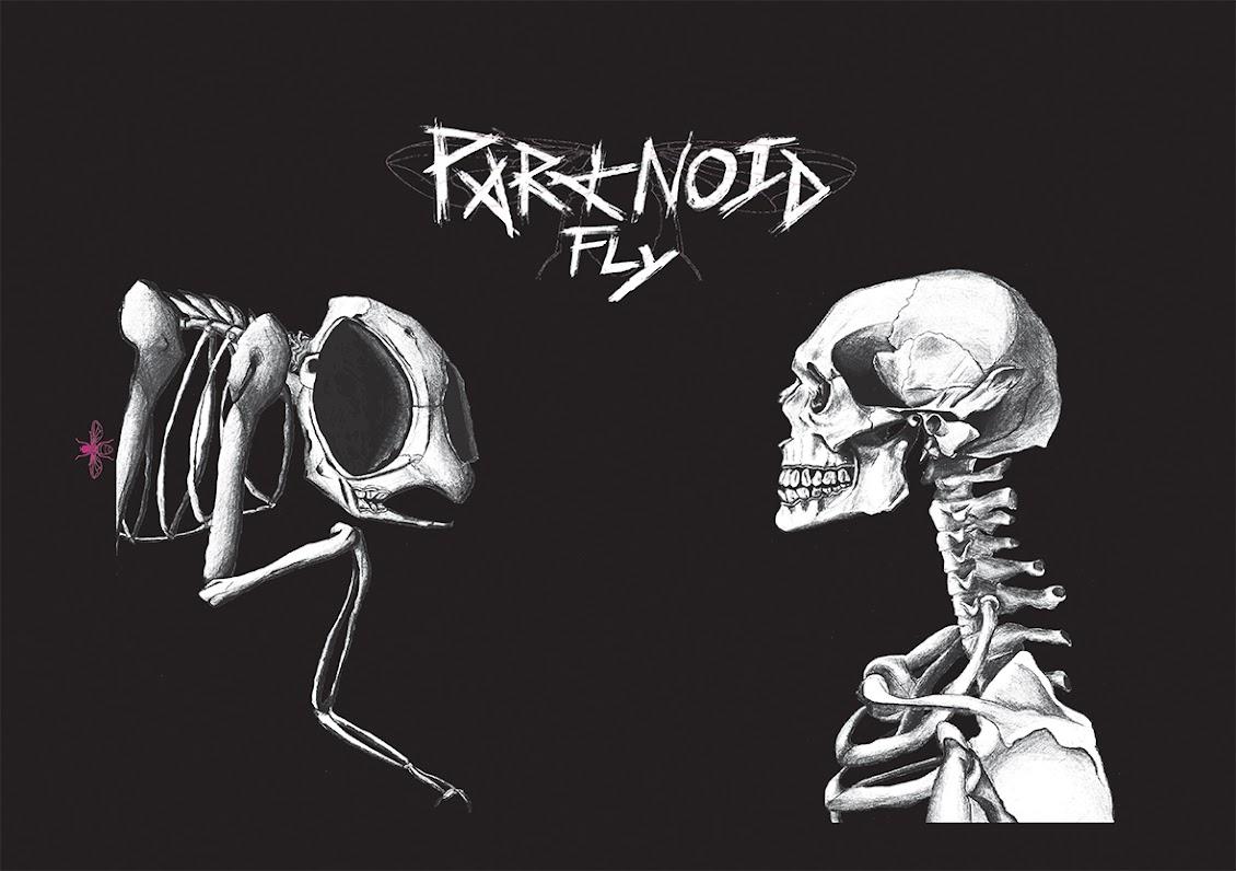 paranoid fly