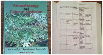 Aromatherapy with Chinese Medicine by Dennis Willmont