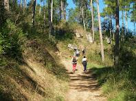 Remuntant la carena del Serrat de la Trompa a través del Bosc de Coromines