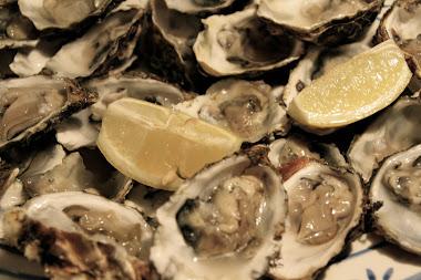 Verse oesters, Kaapstad
