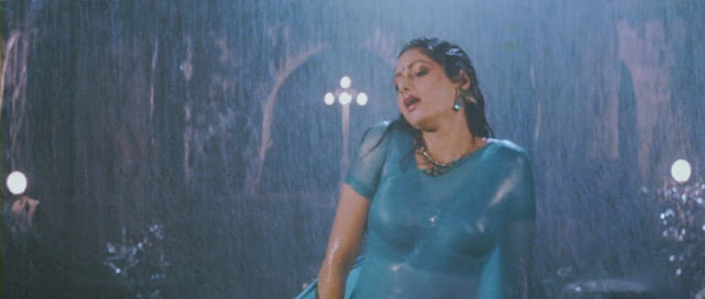 Sri devi hot
