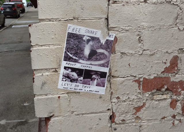 free snake charms,graffiti,Bangor Maine,Park Street