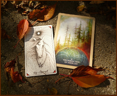 Sacred Rebels Oracle The perfection of your life, Wild Unknown Tarot The Chariot
