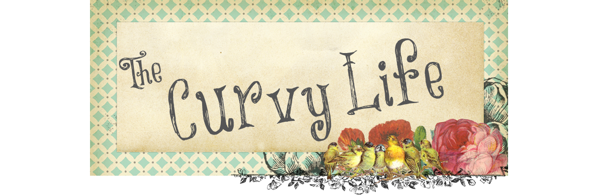 The Curvy Life