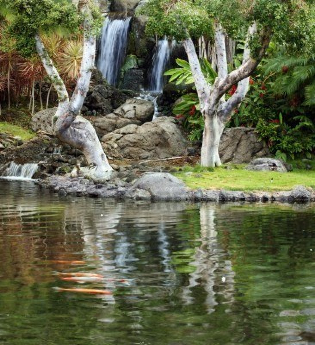 Choosethe right koi pond filter koi fish care info for Koi pond waterfall