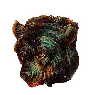 Digital Clip Art Brown Bear Head