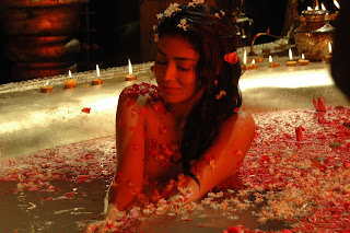 Kannada hot actress Shriya Saran