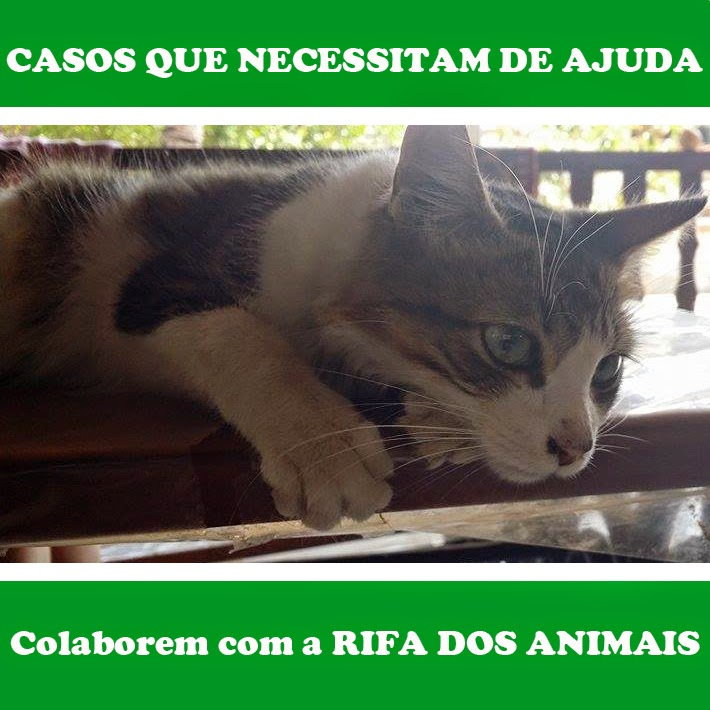RIFAS DOS ANIMAIS