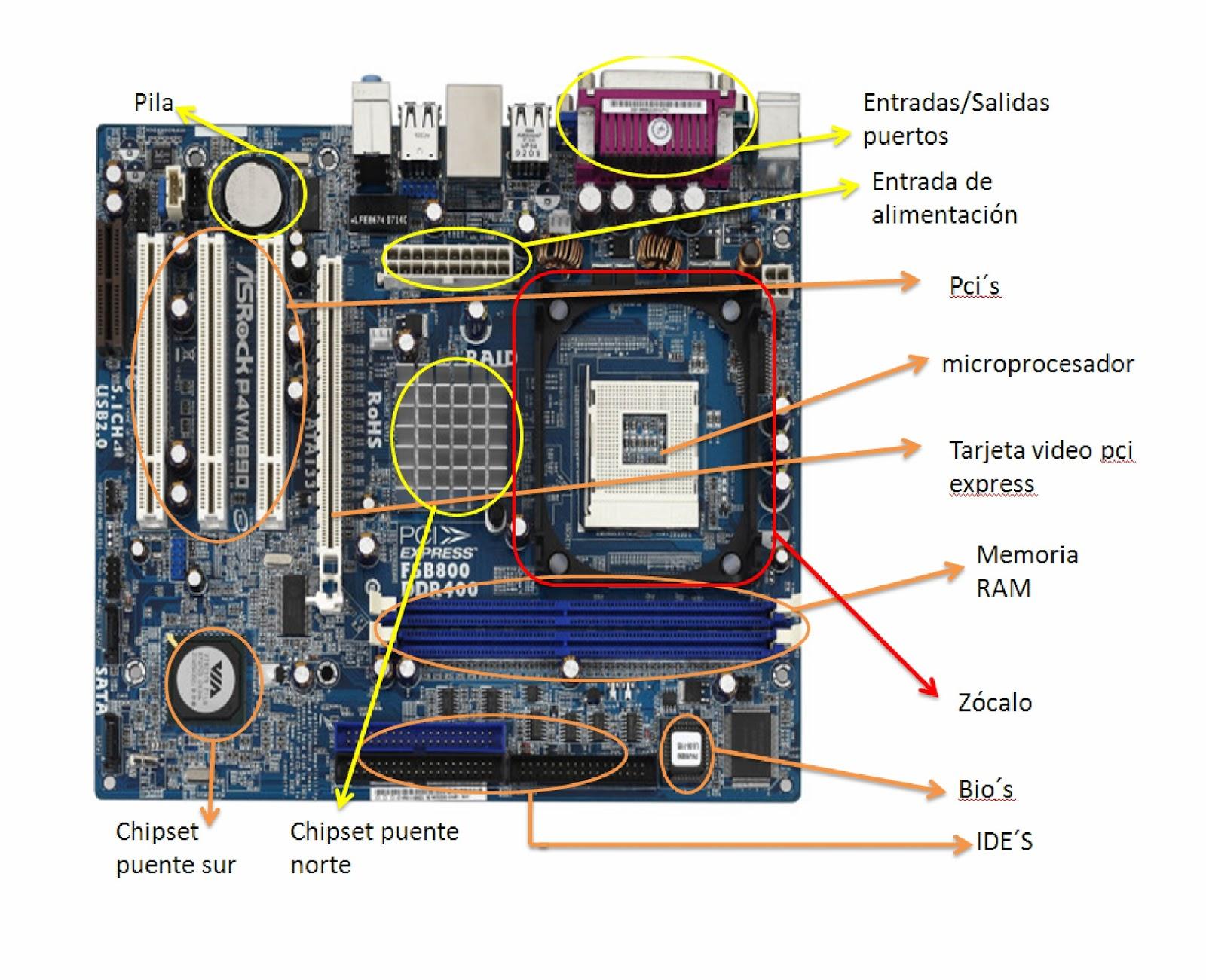 los componentes:
