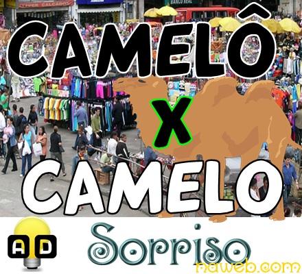 camelô e camelo qual a relação - sorriso na web