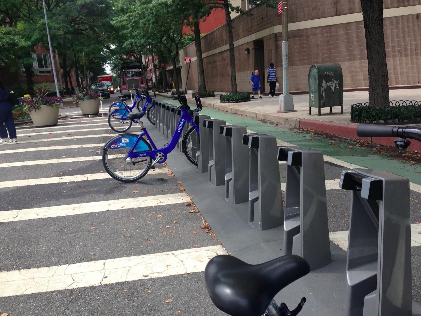 Bike Snob NYC Oopsie Accidentally Purpose