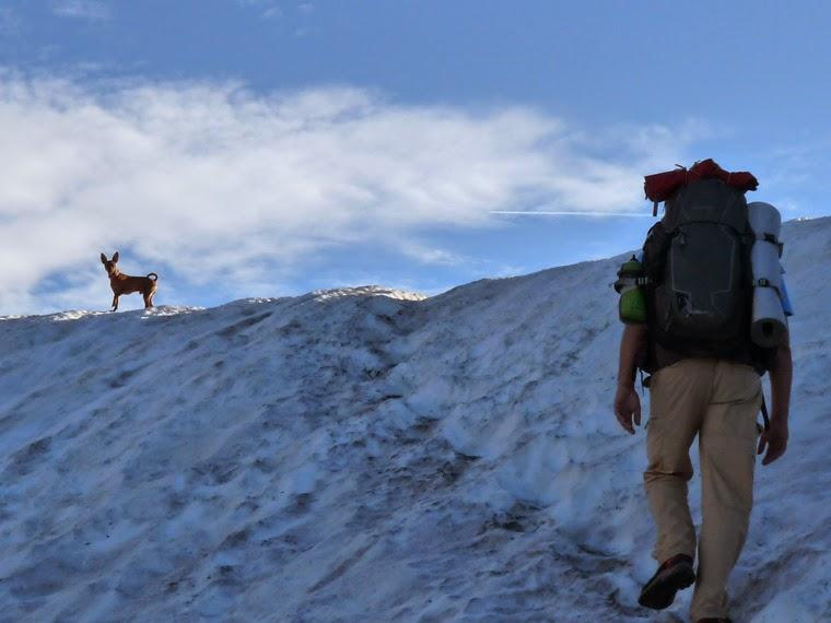 ラ・クロワ・デュ・ボンノム峠からフール峠  残雪 たくあん ツールドモンブラン