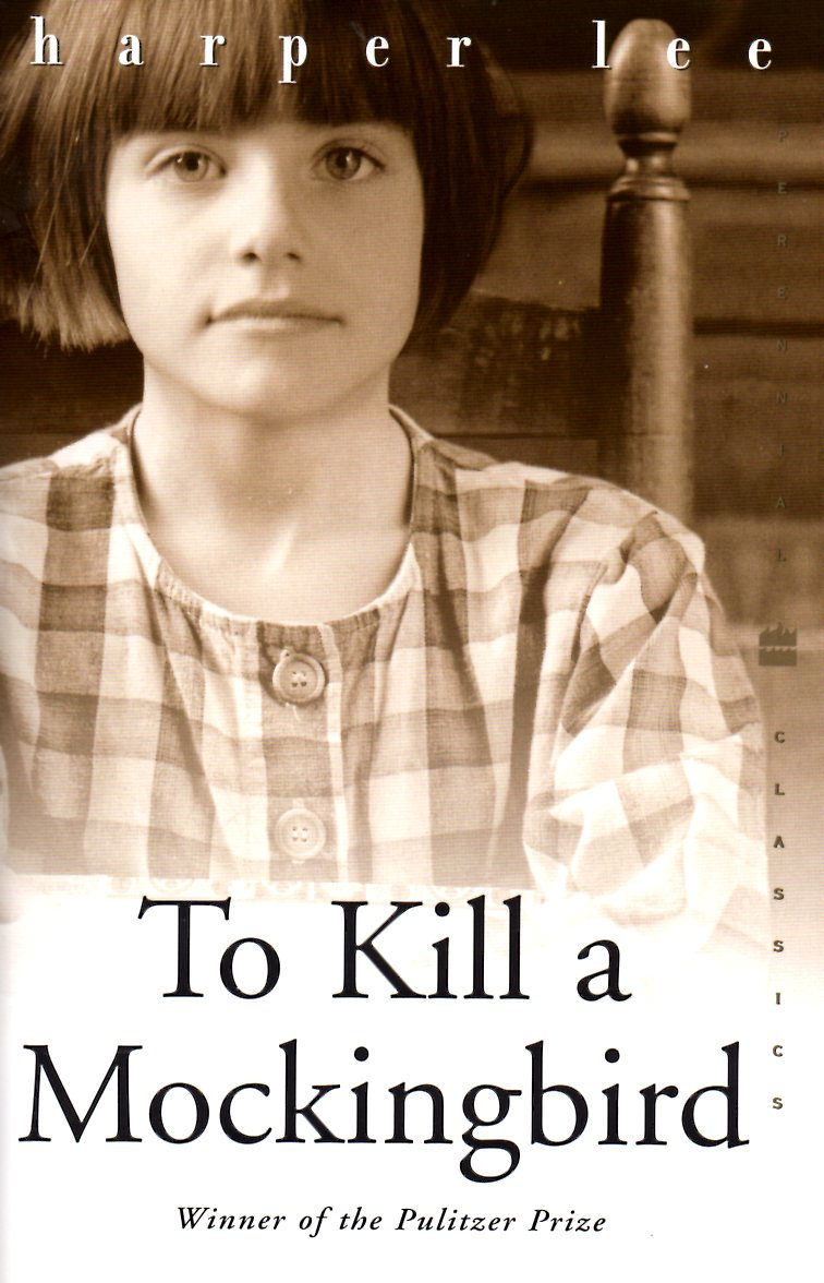 to kill a mockingbird boundaries essay Drawing a blank on how to write about themes in to kill a mockingbird use the 3 themes in this post for inspiration to get you on the right track.