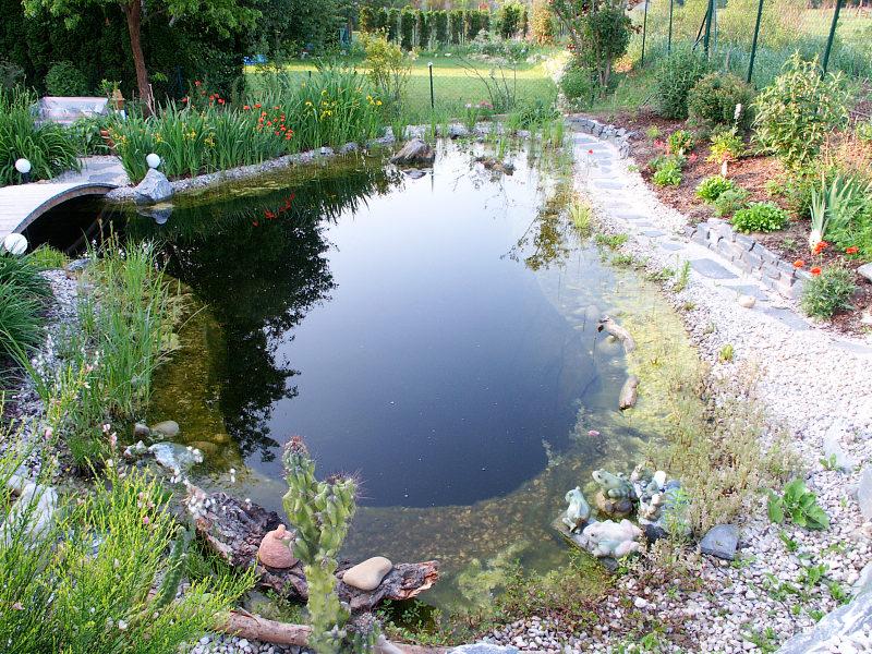 Jard n solar c mo oxigenar mi estanque con energ a solar for Como oxigenar un estanque
