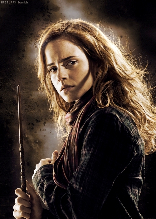 Hogwarts alumni golden trio wand - Harry potter hermione granger ron weasley ...
