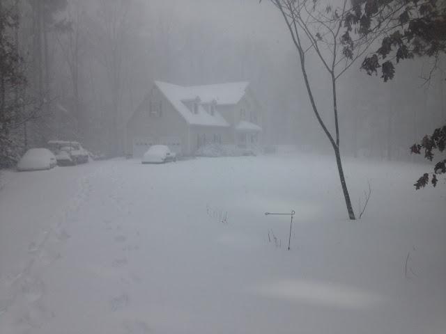 Jonas, Blizzard of 2016, #blizzard2016, #snowzilla, #snowmaggedon2016