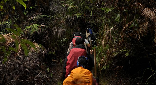Wisatawan Flashpacker: di Antara Backpacker dan Turis
