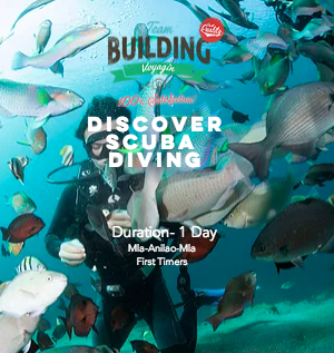 Discover Scuba Diving- One Day