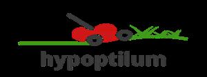 hypoptilum.xyz