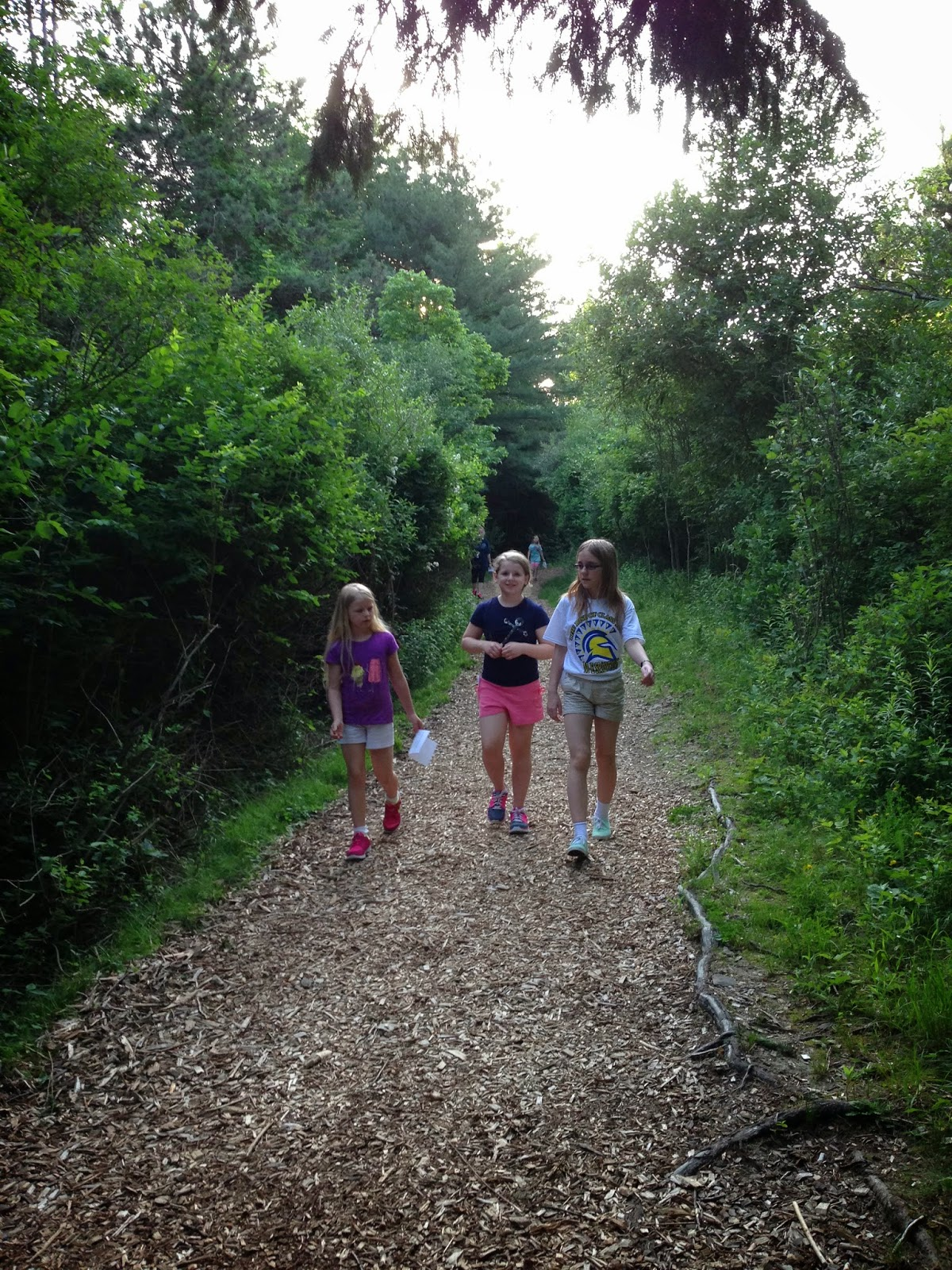 Nature Trail Scavenger Hunt - Free Printable. From Hi! It's Jilly #kids #nature #scavengerhunt