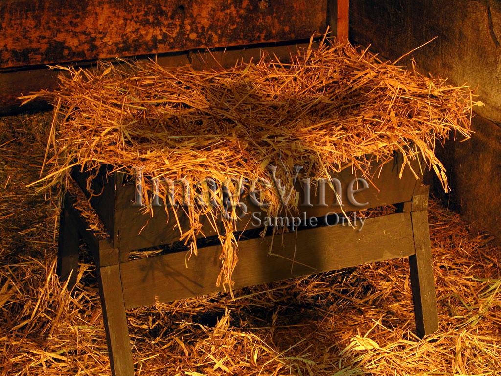 Living in grace blog december 2011