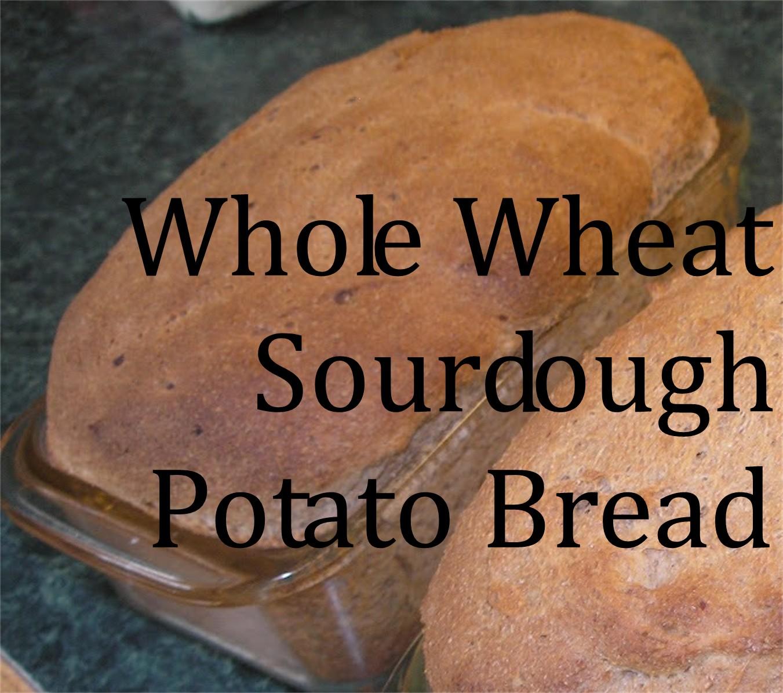 recipe: sourdough potato bread starter [34]