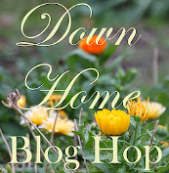 Linky to a Farming Blog Hop