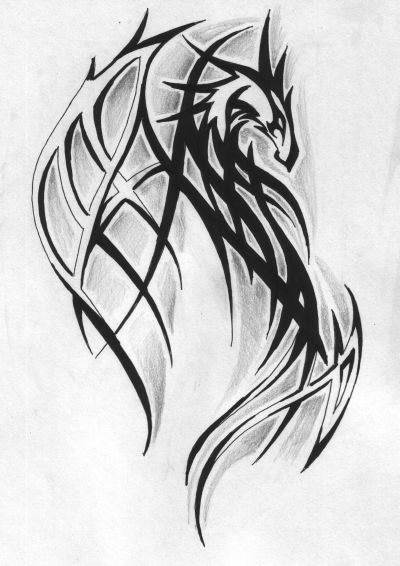 tribal dragon tattoos the most popular tribal tattoo design best tattoo pictures. Black Bedroom Furniture Sets. Home Design Ideas