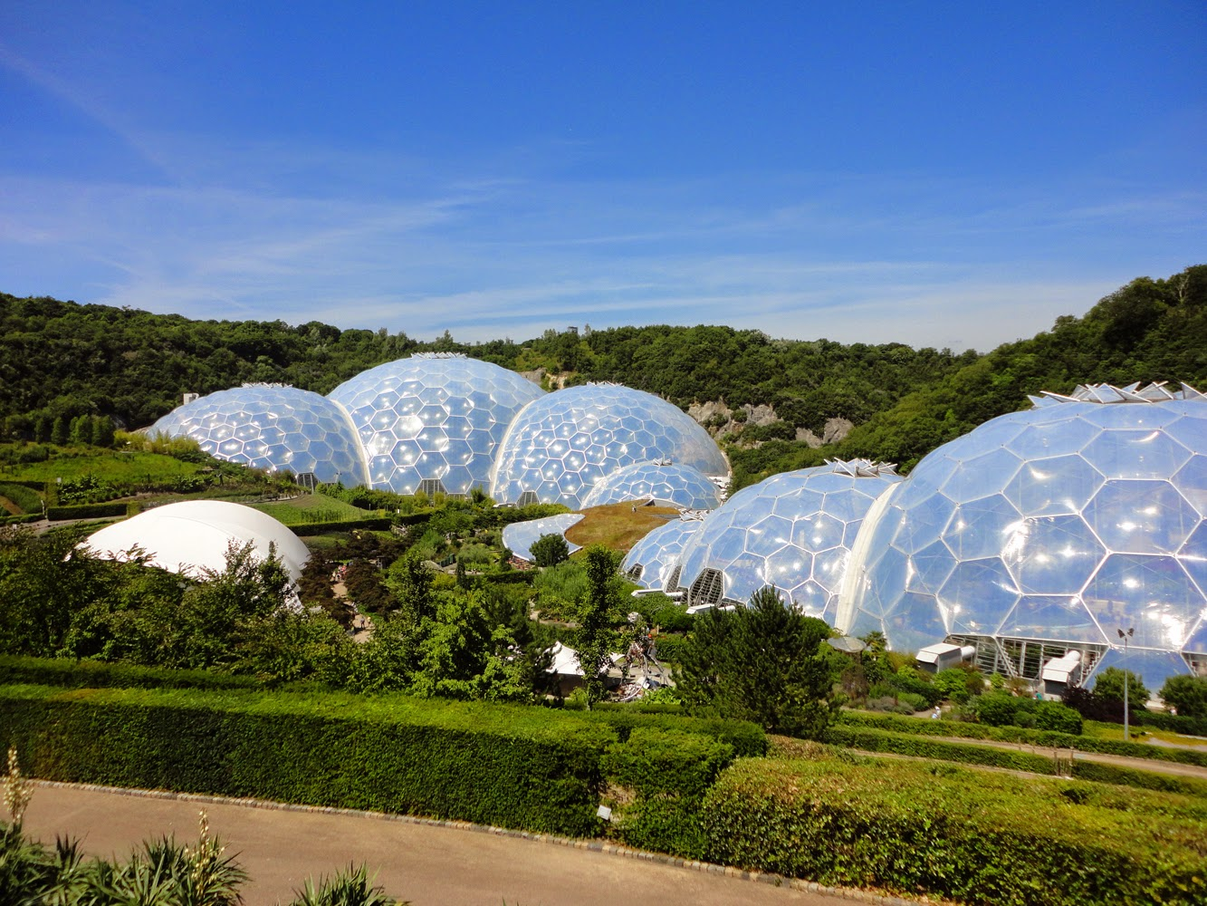 Frog Land Aveda And The Eden Project