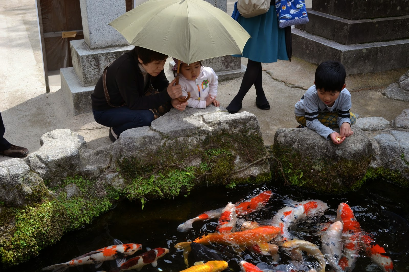 Land of tomorrow dazaifu and night fukuoka tenmangu for Land big fish