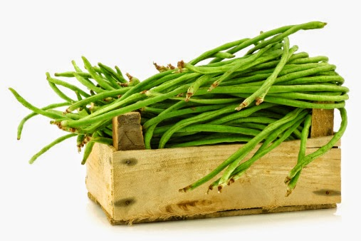 bisa dipastikan hampir semua orang akan mengenal yang namanya kacang panjang Manfaat Kacang Panjang